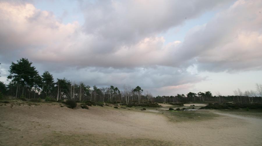 reindersmeer-8
